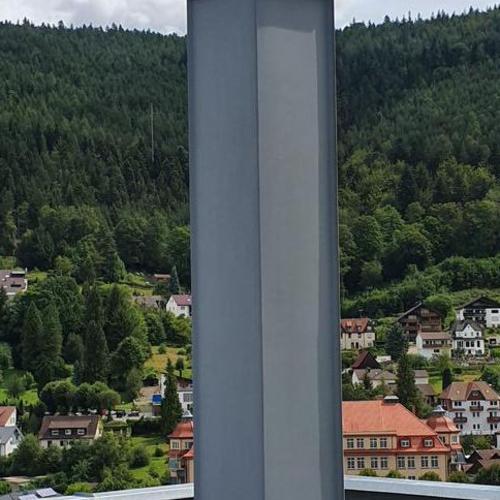 Leichtbauschornstein, Verkleidung PREFA-Patina in Bad Wildbad